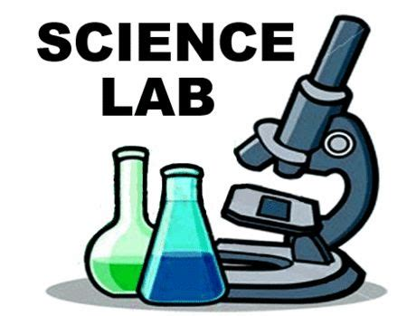 How to write an experiment report science